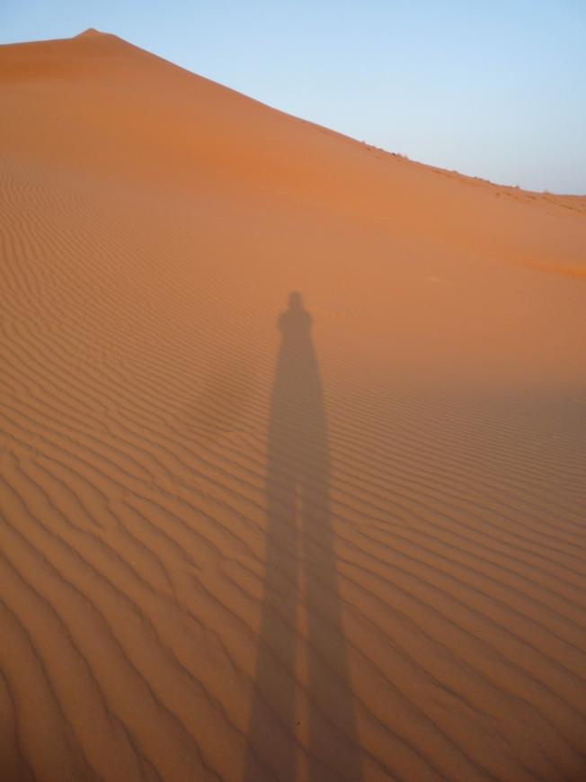 DesertShadows